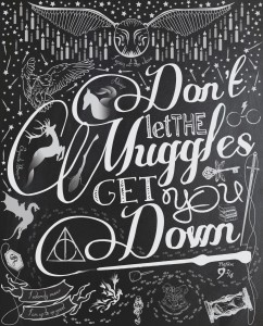 Don't-let-the-muggles